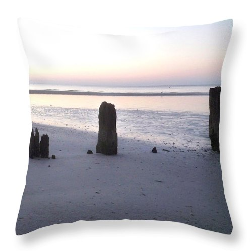 Florida Throw Pillow featuring the photograph What Remains by Chris Andruskiewicz