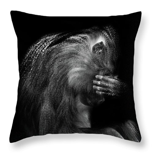 Baboon Throw Pillow featuring the photograph When Its All To Much by Martin Newman