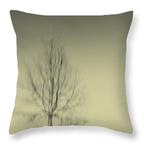 Dipasquale Throw Pillow featuring the photograph When You Wake Up I Will Have Gone by Dana DiPasquale