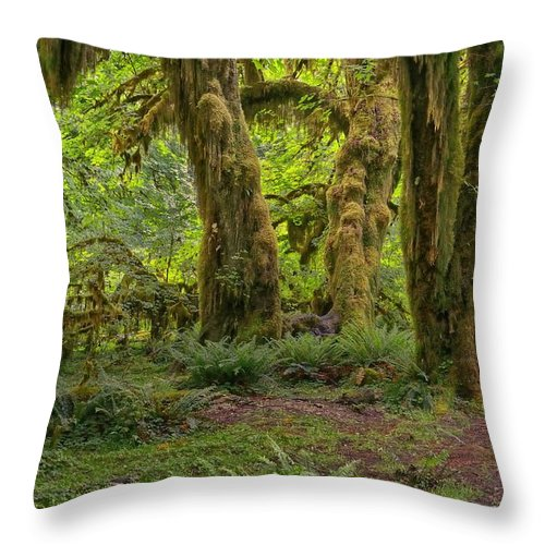Olympic National Park Throw Pillow featuring the photograph Where The Leprechauns Roam by Philip Kuntz