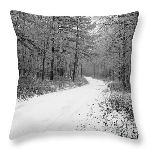 Winter Throw Pillow featuring the photograph Where Will It Lead by Jean Macaluso