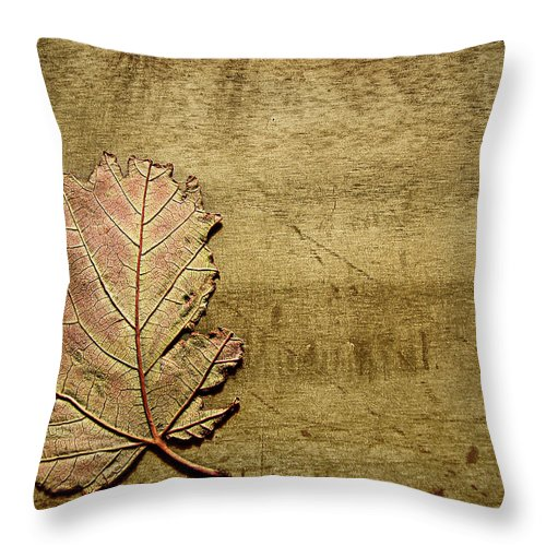 Autumn Throw Pillow featuring the photograph ...while You Fall Apart by Dana DiPasquale