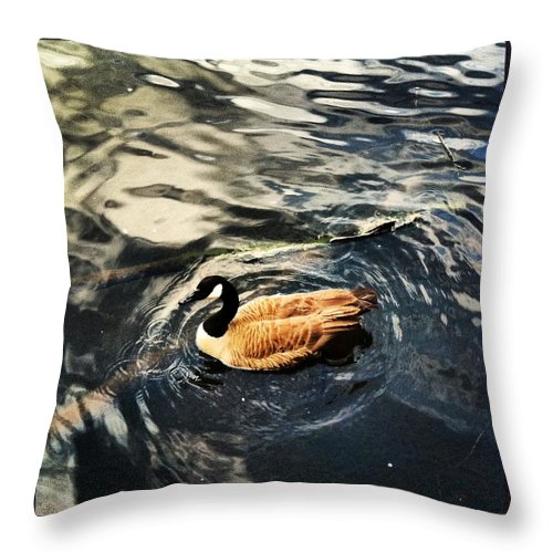 Duck Throw Pillow featuring the photograph Whirling by Artie Rawls