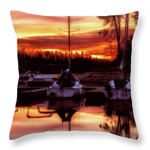 Oak Bottom Throw Pillow featuring the photograph Whiskey At Sunrise by Marnie Patchett