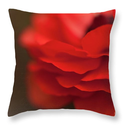 Red Throw Pillow featuring the photograph Whispers Of Love by Beve Brown-Clark Photography