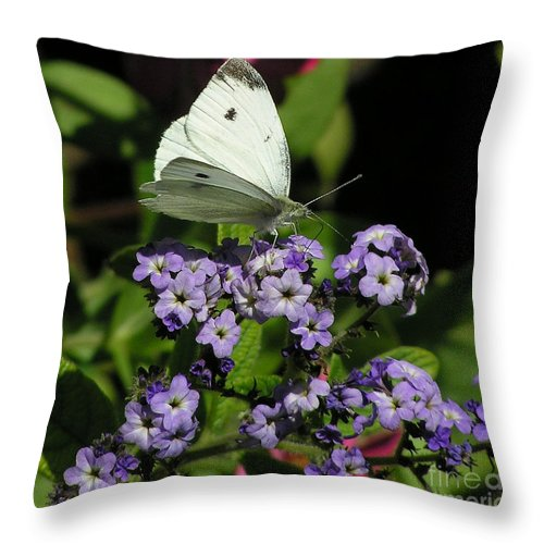 White Throw Pillow featuring the photograph White Butterfly by Louise Magno