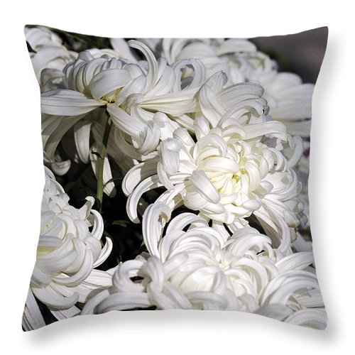 Clay Throw Pillow featuring the photograph White Chrysanthemum by Clayton Bruster