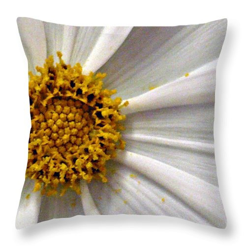 Flower Throw Pillow featuring the photograph White Cosmos by Jacqueline Milner