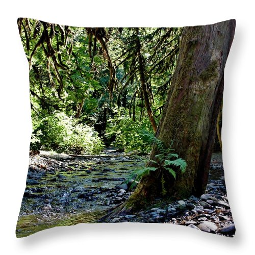 White Creek Throw Pillow featuring the photograph White Creek by Stacie Gary