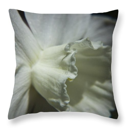 Flower Throw Pillow featuring the photograph White Daffodil by Teresa Mucha
