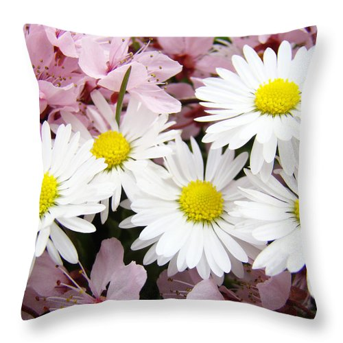 Blossom Throw Pillow featuring the photograph White Daisies Flowers Art Prints Spring Pink Blossoms Baslee by Baslee Troutman