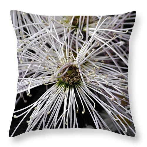 Clay Throw Pillow featuring the photograph White Flora by Clayton Bruster