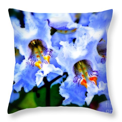 Flowers White Flower Photo Photograph Treated Photoshop Art Artified Artist Craig Walters Throw Pillow featuring the photograph White Flowers by Craig Walters