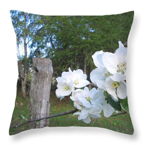 Flowers Throw Pillow featuring the photograph White Flowers by Valerie Josi