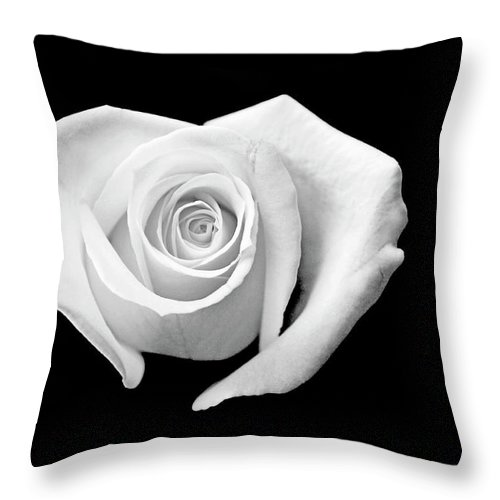 Rose Throw Pillow featuring the photograph White Heart-shaped Rose by Glennis Siverson