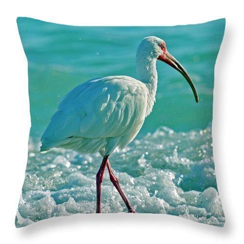 Ibis Throw Pillow featuring the photograph White Ibis Paradise by Betsy Knapp