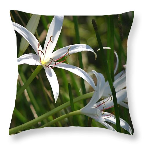 Lillies Throw Pillow featuring the photograph White Lillies by Mary Haber