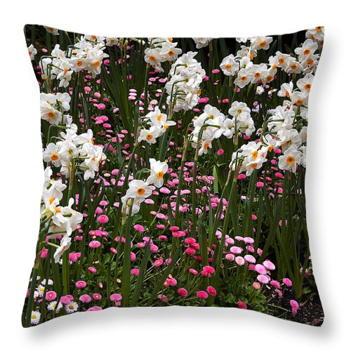 Flower Throw Pillow featuring the photograph White Narcissus With Pink English Daisies In A Spring Garden by Louise Heusinkveld