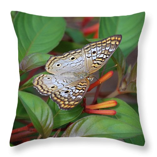 Butterflies Throw Pillow featuring the digital art White Peacock Butterfly by DigiArt Diaries by Vicky B Fuller