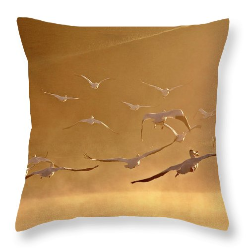 American Throw Pillow featuring the digital art White Pelicans Flying Through Morning Mist Over River by Mark Duffy