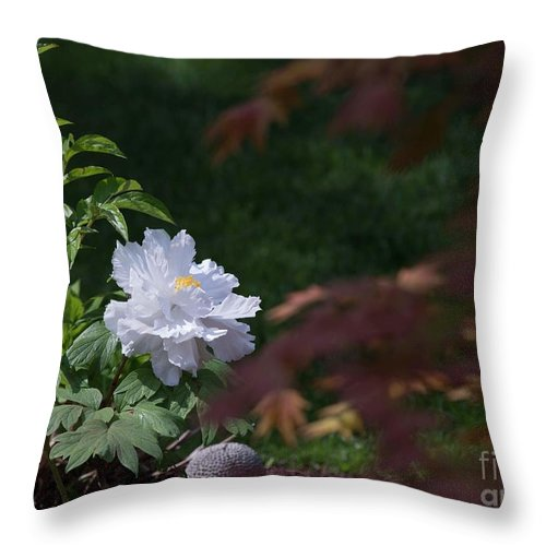 White Throw Pillow featuring the photograph White Peony by David Bearden