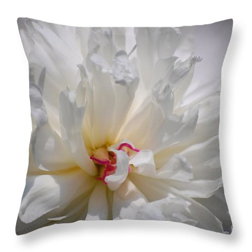 Digital Photography Throw Pillow featuring the photograph White Peony by David Lane