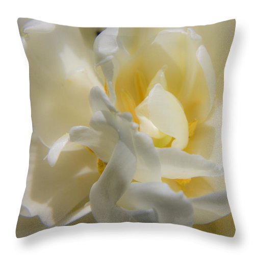 White Throw Pillow featuring the photograph White Peony Tulip Detail by Teresa Mucha