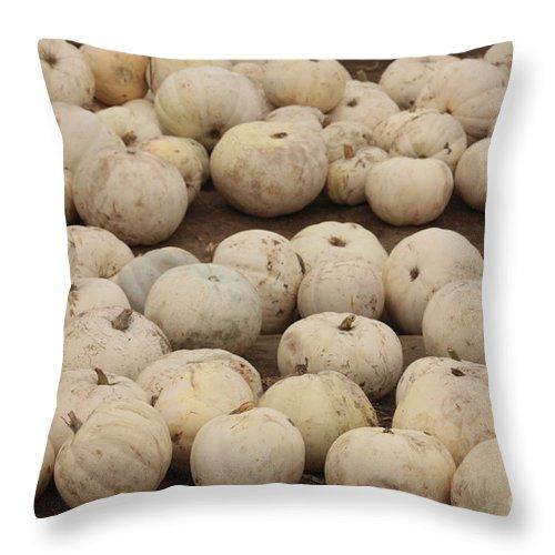 White Pumpkins Throw Pillow featuring the photograph White Pumpkins by Carol Groenen