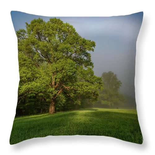Fogbow Throw Pillow featuring the photograph White Rainbow by Darwin White