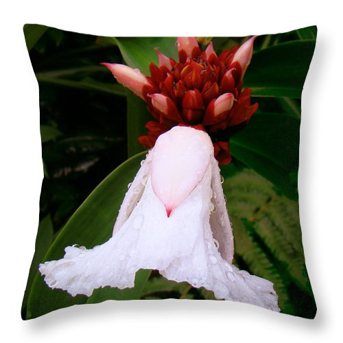 White Flower Throw Pillow featuring the photograph White Rainforest Flower by Merja Waters