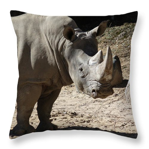 Maryland Throw Pillow featuring the photograph White Rhino by Ronald Reid