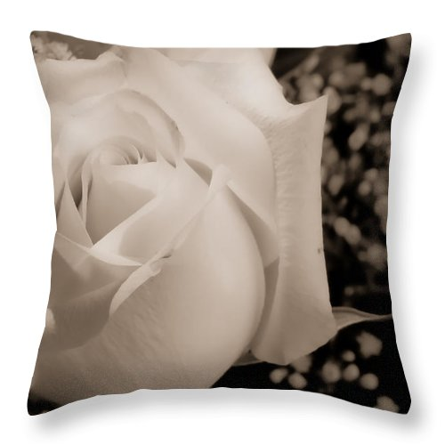 Flowers Throw Pillow featuring the photograph White Rose Bw Fine Art Photography Print by James BO Insogna