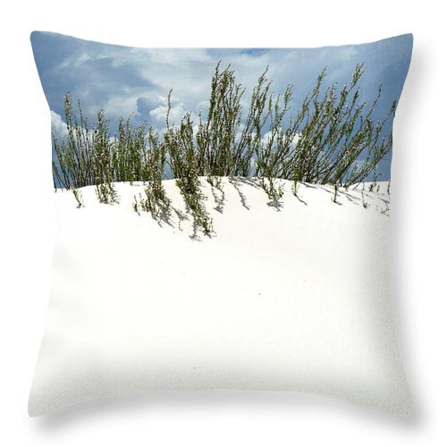 Sand Throw Pillow featuring the photograph White Sand Green Grass Blue Sky by Joe Kozlowski