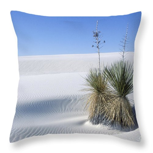 White Sands Throw Pillow featuring the photograph White Sands Dune And Yuccas by Sandra Bronstein