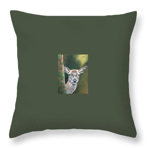 Rainforest Throw Pillow featuring the painting White Tail Doe At Ancon Hill by Ceci Watson