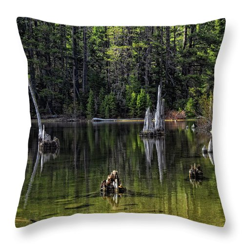 Tree Throw Pillow featuring the photograph White Trees Of Gondor by Donna Blackhall