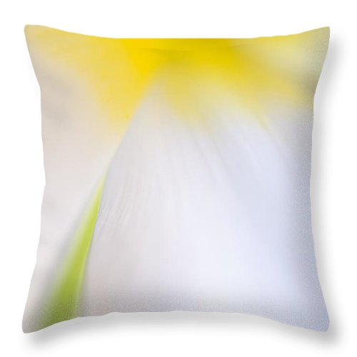 Flower Throw Pillow featuring the photograph White Tulip Detail by Silke Magino