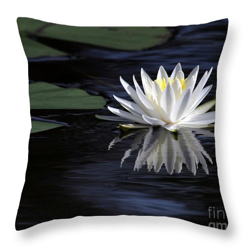 Water Lily Throw Pillow featuring the photograph White Water Lily by Sabrina L Ryan