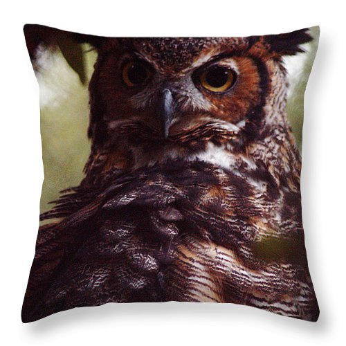 Clay Throw Pillow featuring the photograph Who by Clayton Bruster
