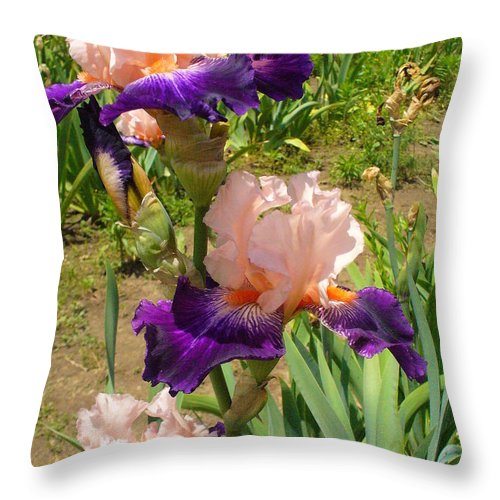 Iris Throw Pillow featuring the photograph Who Could Ask For Anything More by Peggy King