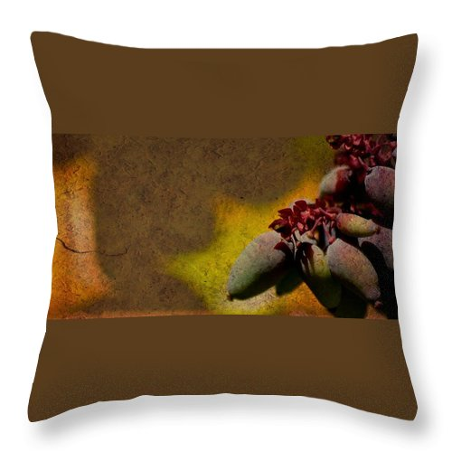 Fruit Throw Pillow featuring the photograph Who Knows by Trish Tritz