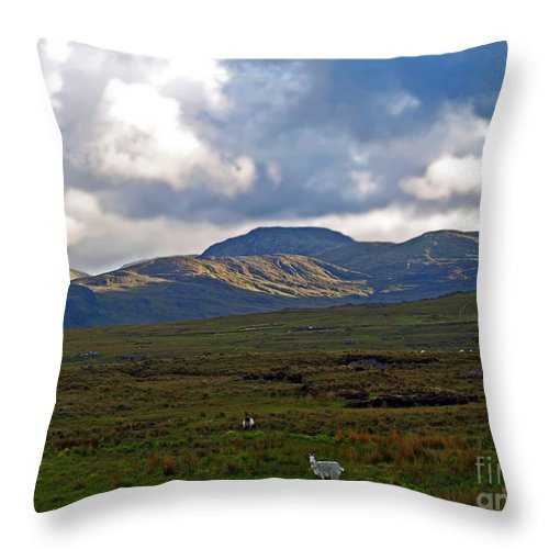 Fine Art Photography Throw Pillow featuring the photograph Who You Lookin' At by Patricia Griffin Brett
