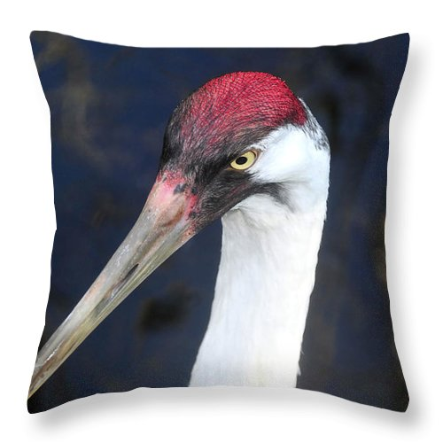 Whooping Crane Throw Pillow featuring the photograph Whooping Crane Mug Shot by David Lee Thompson
