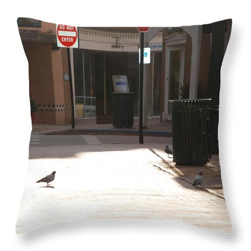 Dog Throw Pillow featuring the photograph Why Question Mark by Rob Hans