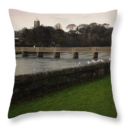 Footbridge Throw Pillow featuring the photograph Wicklow Footbridge by Tim Nyberg