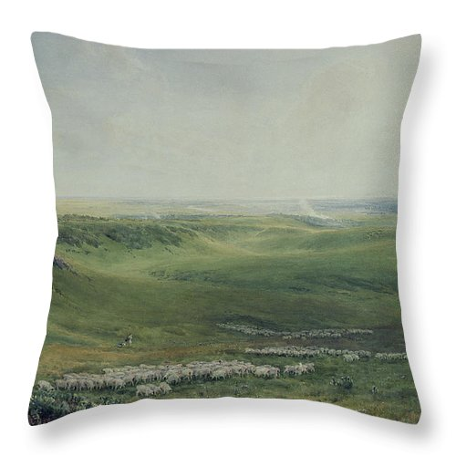 Wide Throw Pillow featuring the painting Wide Pastures by Thomas Collier