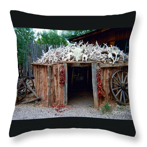 Wigwam Throw Pillow featuring the photograph Wigwam by Louise Magno