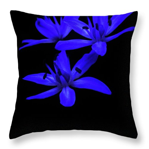 Flower Throw Pillow featuring the photograph Wild Blue Bell by Cliff Norton