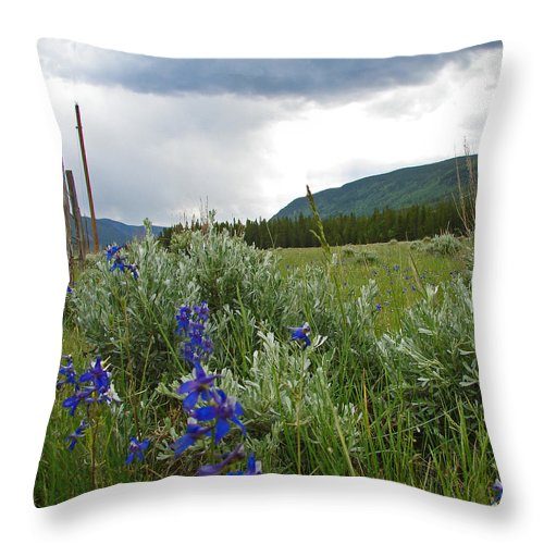 Wild Flowers Throw Pillow featuring the photograph Wild Delphinium by Heather Coen