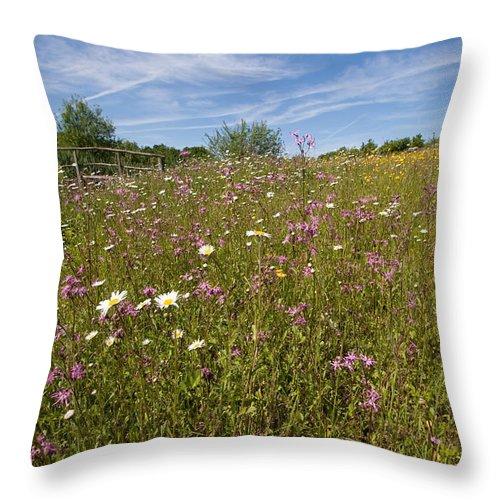 Wild Flower Throw Pillow featuring the photograph Wild Flower Meadow by Bob Kemp